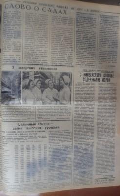 Сельская_новь_152_19121970_3 - Сельская_новь_152_19121970_3.jpg